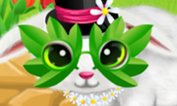 Online free browser game: Paws to Beauty 6: Easter