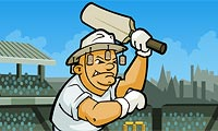 Online free browser game: Cricket World Cup 2011