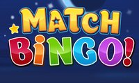 Online free browser game: Match Bingo