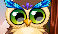 Online free browser game: Cute Owl