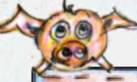 Crazy Piggy